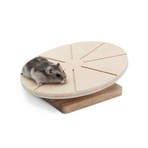 DISCO PARA CORRER Y EJERCICIO HAMSTER RATON LIVING WORLD GREEN